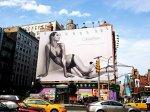 Billboard poznań posiada dobrze umieszczone