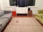 Zawodowe pranie dywanów w przystępnej oraz atrakcyjnej cenie