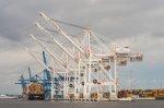Co zrobić, aby uprzyjemnić sobie import i eksport różnych paczek? Solidne rozwiązania, jakie ułatwiają odprawę celną.