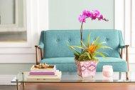 Tanie sposoby, które są zdolne stylowo zwiększyć przestrzeń mieszkania