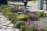 Najnowsze rozwiązania stosowane dla domu i ogrodu
