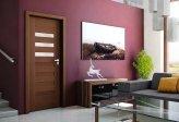 Aranżowanie pomieszczeń – a więc, jakiego typu fototapetę wybrać, aby upiększyć pomieszczenie